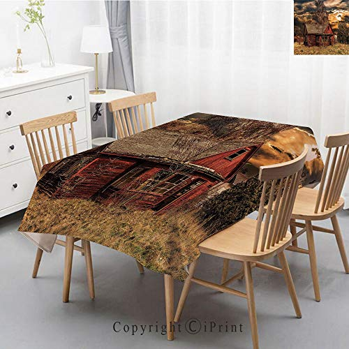 Print Series Rectangle Tablecloth Cotton and Linen Dust proof Absorption Table Cover for Photography Background Dining,55x79 Inch,Scenery Decor,Scary Horror Movie Themed Abandoned House in Pale Grass ()