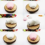 Running Ant Seal Squishy 6 PCS Soft Mochi Squishy Toy Mini Squeeze Toys Kawaii Cute Animal Squishies Slow Rising Seal