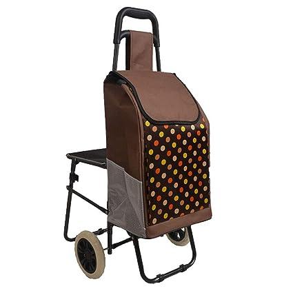 8354edb2f1ab Amazon.com: Yalztc-zyq16 Trolley/with Chair Bag Shopping cart ...