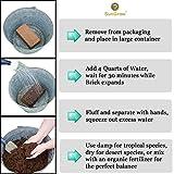 SunGrow Coconut Substrate Bricks for