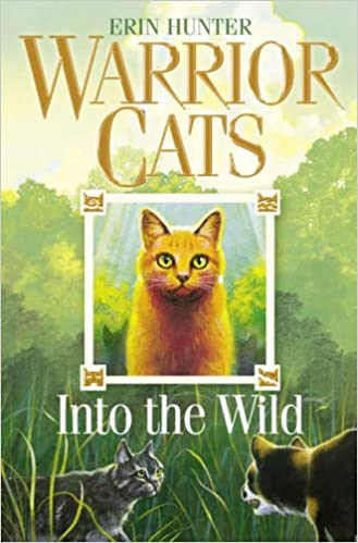 Warrior Cats (1) Into the Wild: Amazon co uk: Erin Hunter: Books