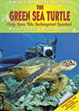 The Green Sea Turtle, Marty Fletcher and Glenn Scherer, 1598450336