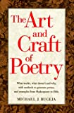 The Art and Craft of Poetry, Michael J. Bugeja, 0898796334