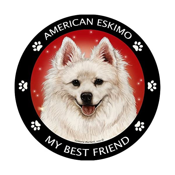 Pet Gifts USA American Eskimo My Best Friend Magnet 1