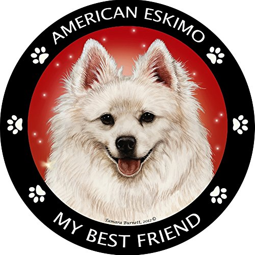 (American Eskimo My Best Friend)