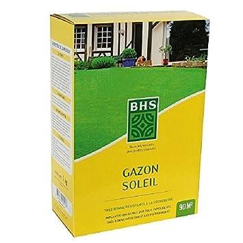 BHS Gazon soleil - Boîte de 3 kg: Amazon.es: Jardín