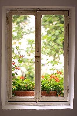 Wallmonkeys Window to Garden Wall Mural Peel and Stick Graphic WM199818