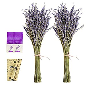 "EMISH Lavender Dried Premium Bundles - 100% Real Natural Dry Dried Lavender Bunch for DIY Home Office Party Wedding Decor - 18""- 22"" Long Stems - 2 Piece Bundle 18"