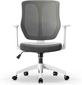 Chairs,Offce Chair Ergonomic Computer Chair Study Table and Chair Modern Simple Swivel Chair Office Chair Seat Learning Chair WEIYV (Color : White, Size : 620-745mm)