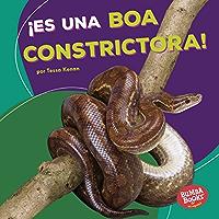 ¡Es una boa constrictora! (It's a Boa Constrictor!) (Bumba Books ® en español — Animales de la selva tropical (Rain… book cover