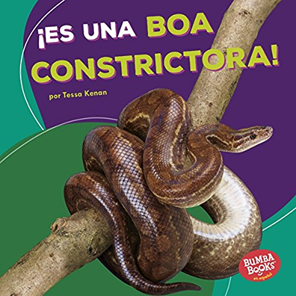 Es Una Boa Constrictora It S A Boa Constrictor Bumba Books En Espanol Animales De La Selva Tropical Rain Forest Animals Spanish Edition Kindle Edition By Kenan Tessa Children Kindle