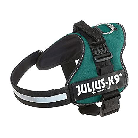 K9 Powerharness, Tamaño: 1, Colore: Verde Oscuro: Amazon.es ...