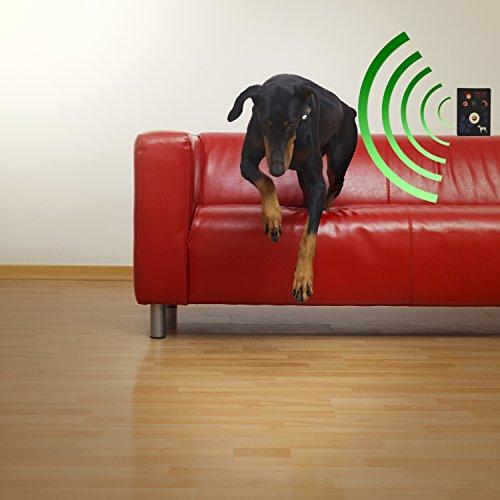 High Tech Pet Электроошейник для собак