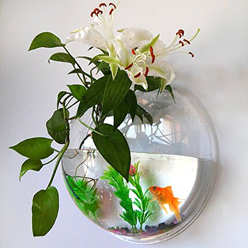 UniqCollection Fish Bowl Acrylic - Fish Bubble Wall Mounted Aquarium Bowl Hanging Pet Fish Tank By Holds up to Approx 1.2 Gallon Water - Fake Plant and Stone Decoration Included by UniqCollection