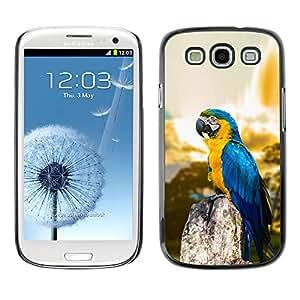 EJOY---Cubierta de la caja de protección la piel dura para el ** Samsung Galaxy S3 ** --Macaw Blue Parrot