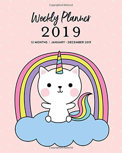 Weekly Planner 2019 12 Months January December 2019 Cute