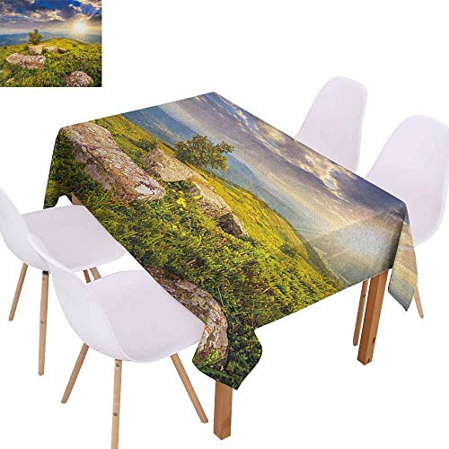 Marilec Stain-Resistant Tablecloth Mountain Small Tree Behind Boulders Hillside Grass Greenery Meadow Scenic Dramatic Picnic W40 xL60 Green Yellow Blue