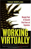 Working Virtually 9781579220693