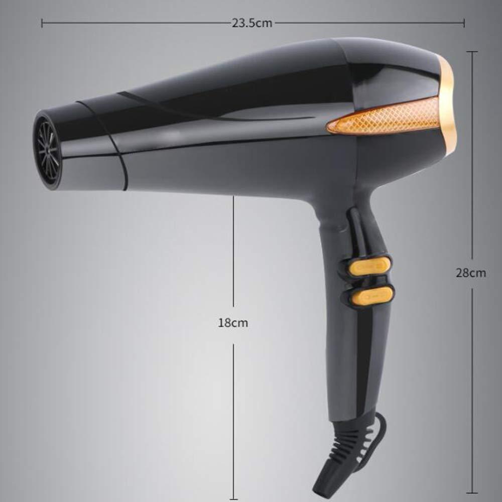 Secador de pelo secador de pelo de alta potencia silencioso Secador de pelo termostático de secador de pelo especial: Amazon.es: Salud y cuidado personal