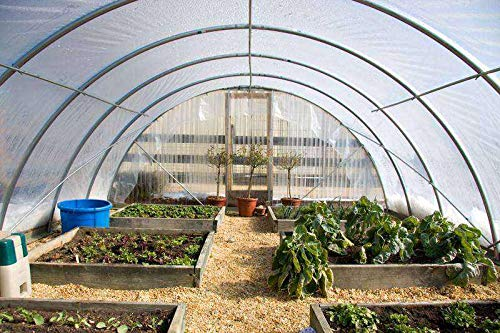 Jur_Global Greenhouse Film-24' x 25'-4 Year-Clear-6 mil Thickness