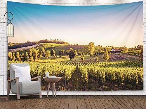 (EMMTEEY Landscape,Art Tapestry,Wall Hanging Tapestry, Tapestries Décor Living Room Bedroom for Home Inhouse by Printed 80x60 Inches for Landscape Bordeaux wineyard France Europe Nature)