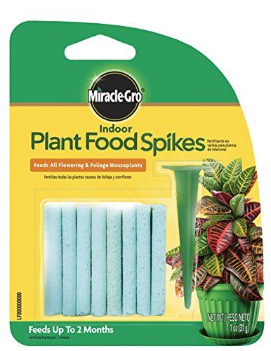 plant food sticks - 2
