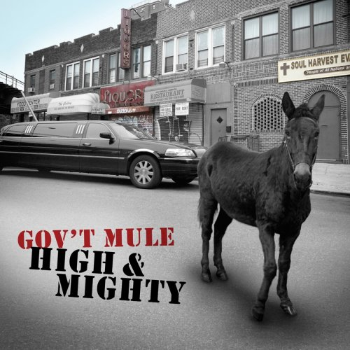 Govt Mule-High And Mighty-CD-FLAC-2006-mwnd Download