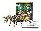 Dinosaur Skeleton 3D Dino Fossil Bones Excavation Science Kit - Triceratops