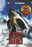Avalanche Sharks - New, Rare Import