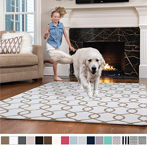 l Faux-Chinchilla Nursery Area Rug, (2' x 3') Super Soft & Cozy High Pile Machine Washable, Modern Rugs, Luxury Shag Carpets for Home Bed/Living Room (Links: White/Beige) ()