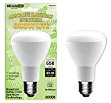 Miracle LED 605010 LED 8 Watt Absolute Daylight Spectrum Grow Lite For Sale