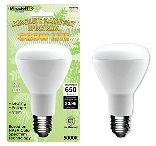 Miracle 605010 Absolute Daylight Spectrum product image