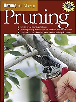 Pruning (Ortho's All About)