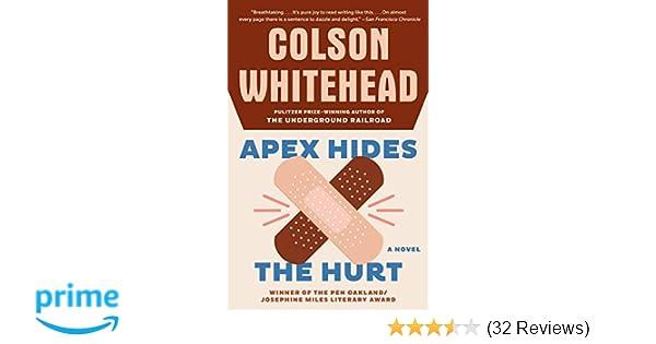 Apex Hides The Hurt A Novel Colson Whitehead 9781400031269