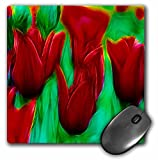3dRose LLC 8 x 8 x 0.25 Inches Red Tulip Flowers Mouse Pad (mp_18514_1)