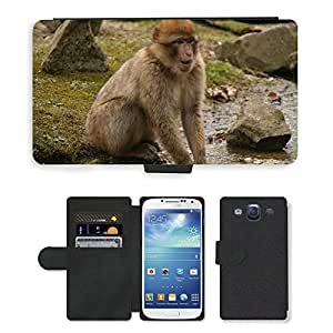 Super Stella Cell Phone Card Slot PU Leather Wallet Case // M00146679 Monkey Happy Animal Sweet Nature // Samsung Galaxy S3 S III SIII i9300