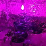 LED Grow Light Bulb, CANAGROW Universal Plant