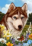 Siberian Husky Red – Best of Breed Summer Flowers Large Flags