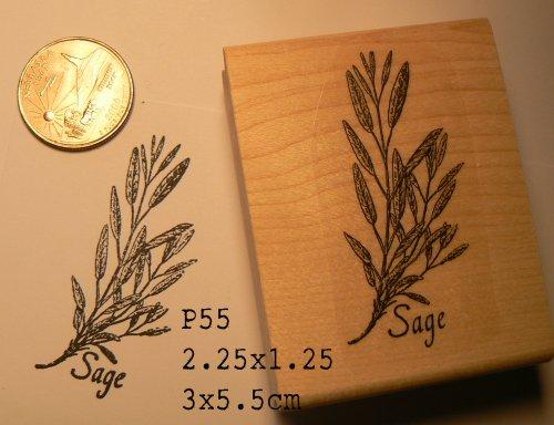 Sage herb rubber stamp WM P55 (Basil Stamp)