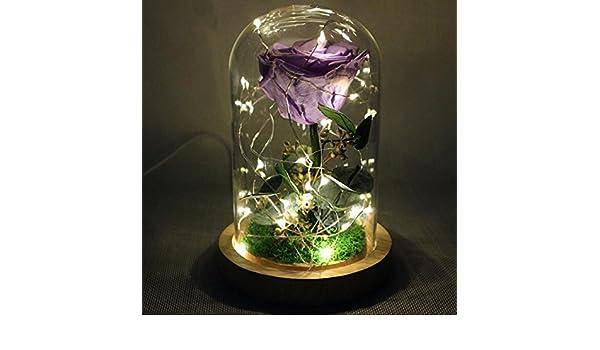 Eterna flor rosa Algunos pétalos caídos, una botella de vidrio, una base de madera , #10.22-18.24: Amazon.es: Hogar