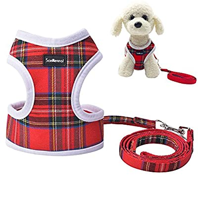 Small Dog Harness and Leash - SCENEREAL Best Adjustable Cute Soft Mesh Plaid Cat Harness Puppy Vest for Kittens Tiny Pets