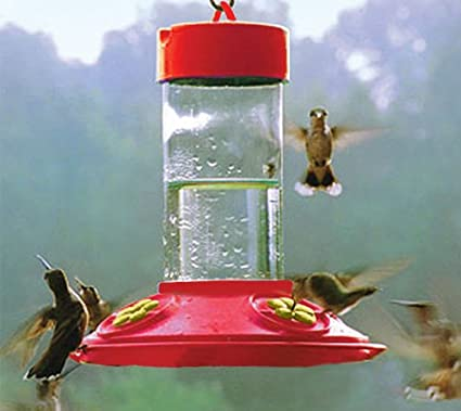 Songbird Essentials Dr Jbs 16 Oz Clean Feeder All Red Feeder W Yellow Flowers