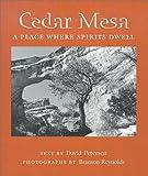 Cedar Mesa, David Petersen, 0816522340