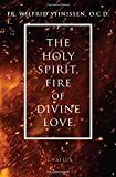 The Holy Spirit, Fire of Divine Love,