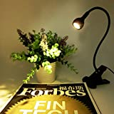 Gold Happy LED Desk Lamp with Clip 1W Flexible LED Reading Lamp USB Power Supply LED Reading Book Lamp