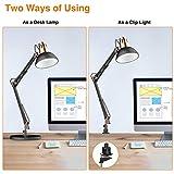 LEPOWER Metal Desk Lamp, Adjustable Goose Neck