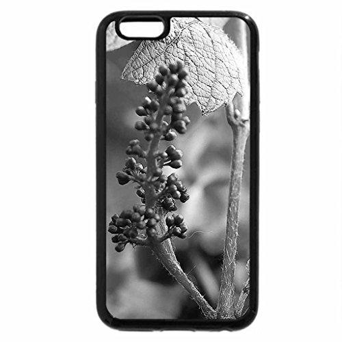 iPhone 6S Plus Case, iPhone 6 Plus Case (Black & White) - I fiori di Brosso