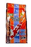 Hikari Usa Inc AHK06370 Wheat Germ 4.4lb, Medium
