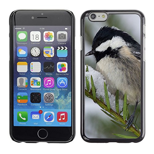 Premio Sottile Slim Cassa Custodia Case Cover Shell // F00011882 oiseau // Apple iPhone 6 6S 6G PLUS 5.5""