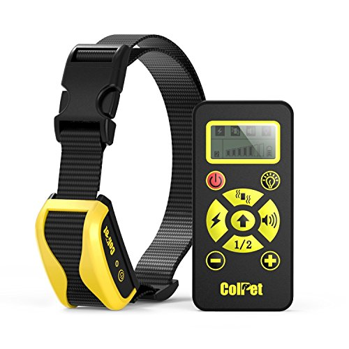 how to train your dog with electronic collar